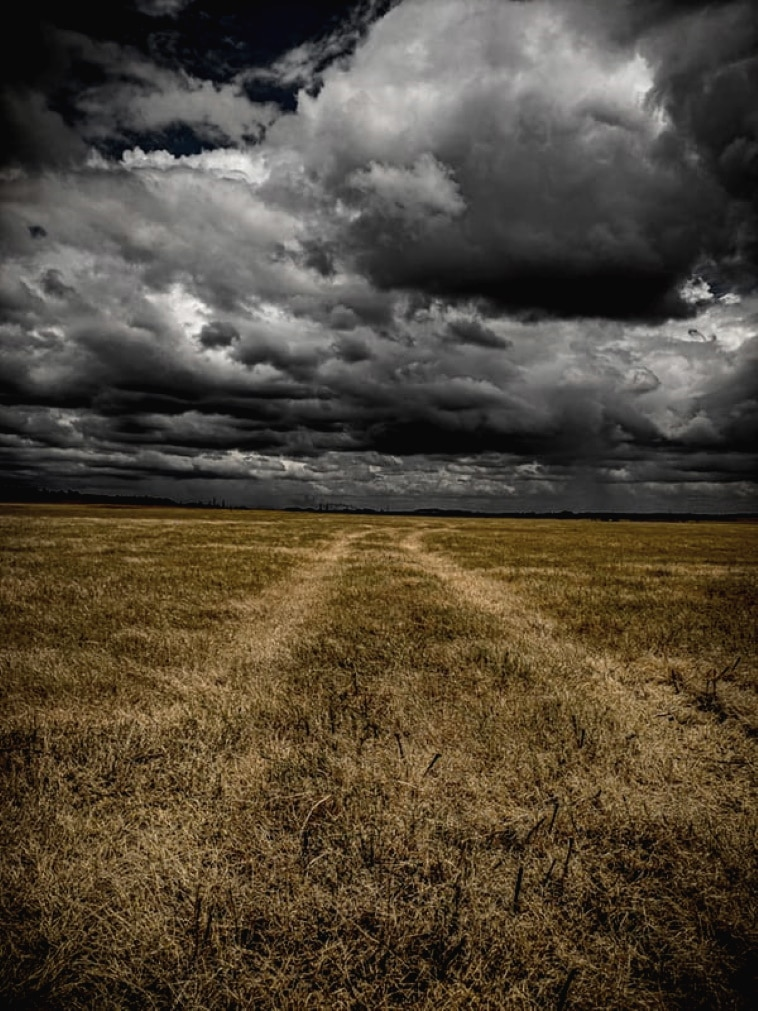A poem by Tricia McCallum. April 3, 2020. A parched field under a dark cloud filled sky.