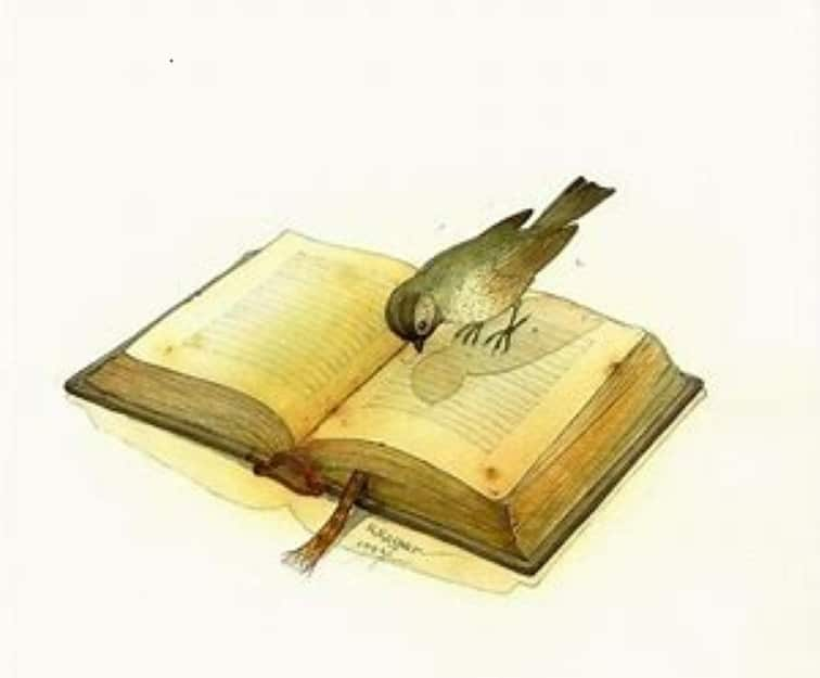 A poem by Tricia McCallum. April 7, 2020. A bird perched on the pages of an open book.